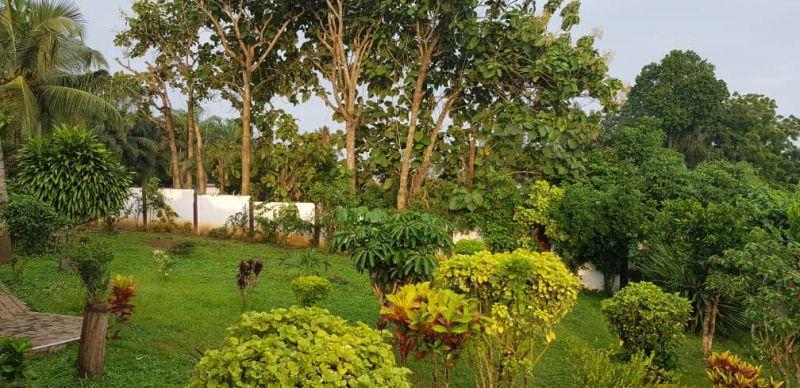 5 bedroom house for rent in takoradi  houses for sale